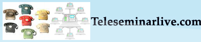 Teleseminar & Webinar Tips & Strategies